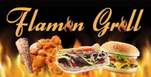 Flamin Grill