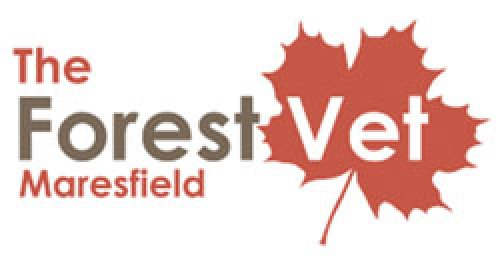 The Forest Vet