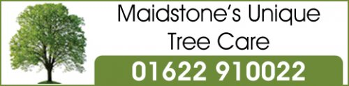 Maidstones Unique Treecare