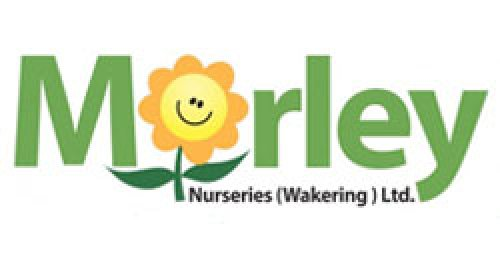 Morley Nurseries (Wakering) Ltd