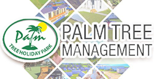 Palm Tree Management Ltd
